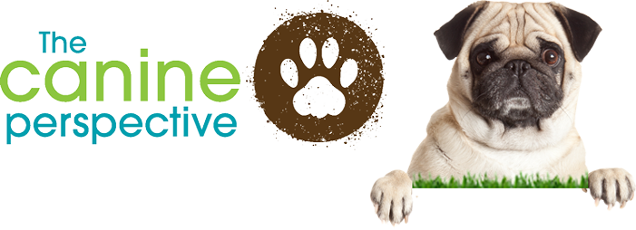 The Canine Perspective Retina Logo