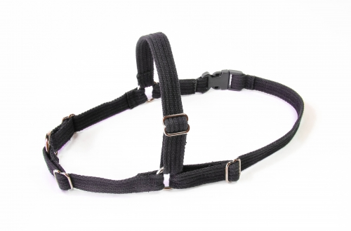 Extra Large Harness 19mm